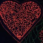Coeur Nocturne